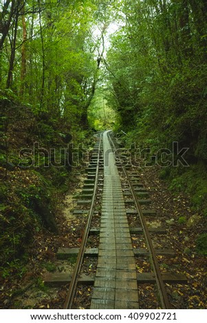 unused rail into the forest - stock photo