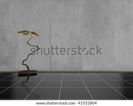 Unusual indoor plant on a shiny black stone floor, with blank space on the wall for your own design or text - stock photo