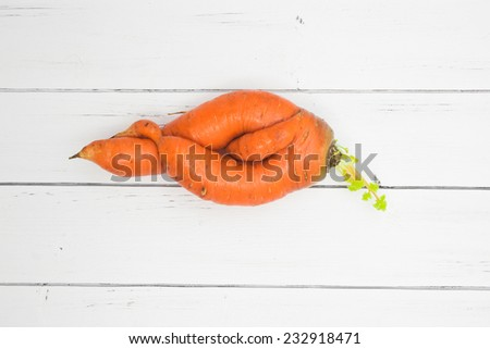 Unusual strange mutation of carrot - curved twisted roots of carrot isolated on a white wooden background - stock photo