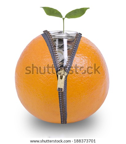 Unzip orange  for growing money inside with white background  - stock photo