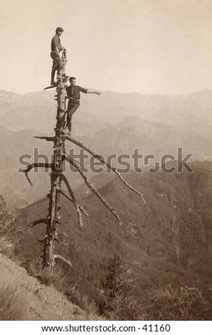 Up a Tree - two young men atop a tall, dead tree scouting out their wilderness surroundings.  A circa 1900, vintage photograph. - stock photo
