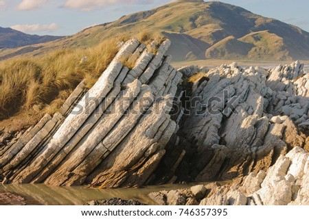 Uplifted rock formation on the East Coast of new Zealand, illustrating seismic activity