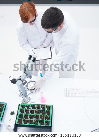 upper- view of one scientist analyzing, formulating and proposing hypothesys to a student in a chemistry lab around lab tools and seedlings  on a lab table - stock photo