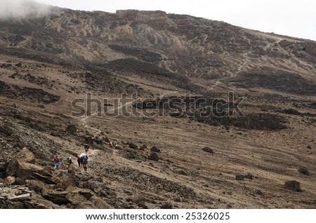 Upwards on a Machame route. Mount Kilimanjaro, Tanzania. - stock photo