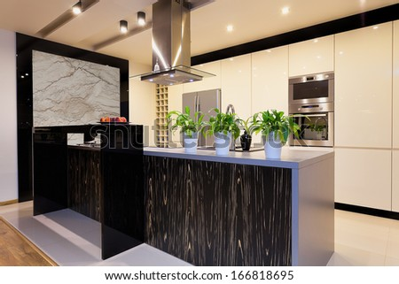 Urban apartment - kitchen furniture with black bar counter
