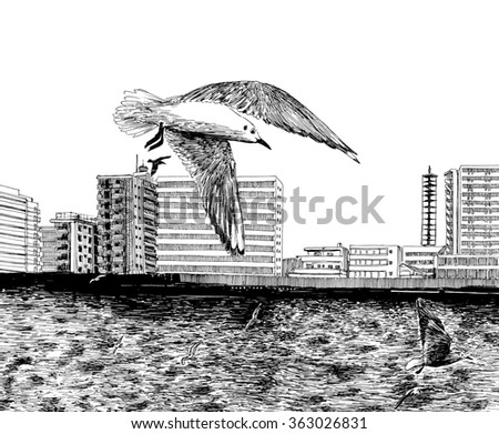 Urban city scene with water channel and some birds/seagulls. Tokyo. Japan. Black and white dashed style sketch, line art, drawing with pen and ink. Retro vintage picture.
