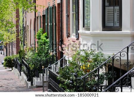 Urban garden detail - stock photo