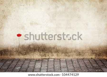 Urban grungy street wall, may be used as background or texture - stock photo