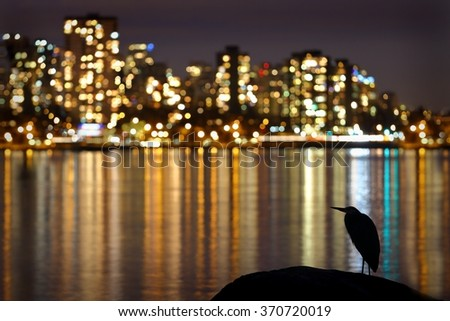 Urban Heron Night. The Vancouver night skyline from Stanley Park with a Great Blue Heron silhouette in the foreground. British Columbia, Canada.  - stock photo