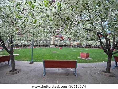 urban park - stock photo