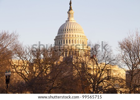 US Capitol building behind the trees in winter, at sundown Washington DC USA