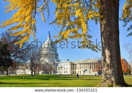 US Capitol Building in Autumn - Washington DC United States - stock photo