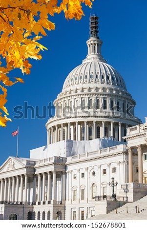 US Capitol with autumn leaves