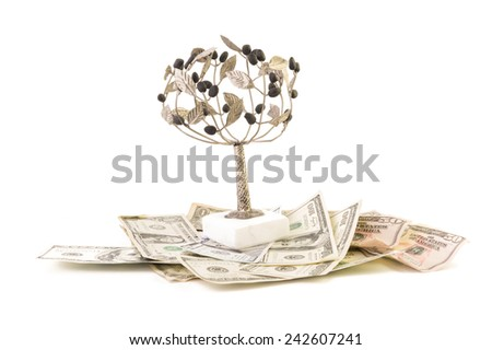 US Dollar bank notes with Olive Tree on White Isolate Background - stock photo