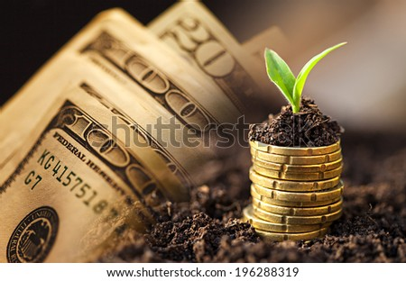 US dollars and euro coins growth. Small depth of field. - stock photo