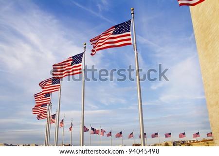 US flags near Washington Monument, Washington DC - stock photo