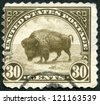 USA - CIRCA 1923: A stamp printed in the United States of America shows American buffalo, circa 1923 - stock photo