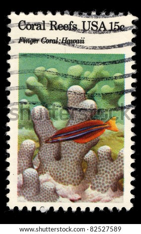 USA - CIRCA 1980 : A stamp printed in the USA shows Coral Reefs, Finger Coral, Hawaii, circa 1980