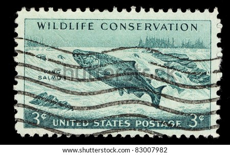 USA - CIRCA 1956: A stamp printed in the USA shows Wildlife conservation, circa 1956