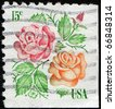 USA - CIRCA 1978: A stamp printed in USA shows two roses, circa 1978 - stock photo