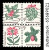USA - CIRCA 1964:  America's first se-tenant, different designs joined together. The Christmas postage stamps show mistletoe, poinsettia flower, pine and cone, and holly.  Design by Thomas F. Naegele., circa 1964 - stock photo
