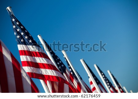 USA flags - vibrant American flags in a row under clear blue sky - stock photo
