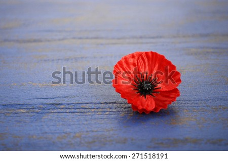 Remembrance day poppy stock images royalty free images vectors usa memorial day concept of red remembrance poppy on dark blue vintage distressed wood table publicscrutiny Image collections