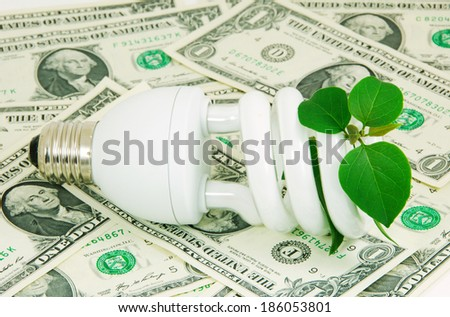 Use the saving energy bulb to save your money and reduce global warming,the green energy concept. - stock photo