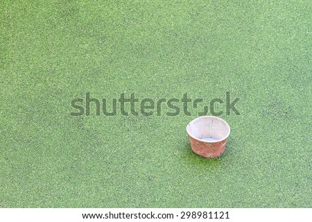 Used paper cup throw in to water and green grass field