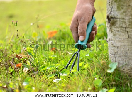using a gardening tool in the garden - stock photo