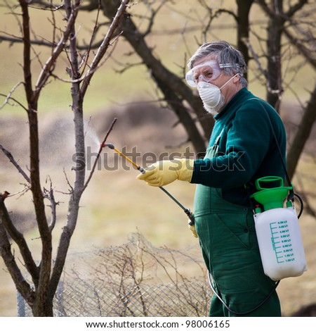 Using chemicals in the garden/orchard: gardener applying an insecticide/a fertilizer to his fruit shrubs, using a sprayer - stock photo