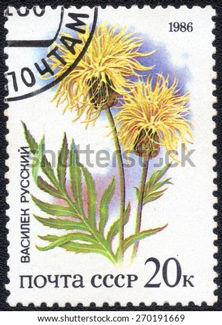 "USSR - CIRCA 1986: A Postage Stamp series of images ""wildflowers"", circa 1986 - stock photo"