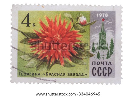 USSR - CIRCA 1978: A Postage Stamp Shows Dahlia Red Star, circa 1978 - stock photo