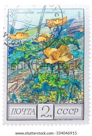 "USSR - CIRCA 1976: A Postage Stamp Shows Image of a Golden Pasque Flower with the Designation ""Pulsatilla Aurea"", circa 1976 - stock photo"
