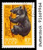 USSR - CIRCA 1970: a stamp printed by USSR shows black bear, series Sikhote-Alin Reserve, circa 1970 - stock photo