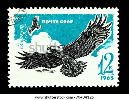 USSR - CIRCA 1965: A stamp printed in Russia shows Golden eagle, series Birds of prey, circa 1965 - stock photo