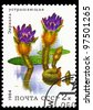 USSR-CIRCA 1984: A stamp printed in the USSR, depicts aquatic plant Euryale ferox, circa 1984 - stock photo