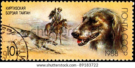 USSR- CIRCA 1988:  A stamp printed in the USSR shows a Taigan Kirghiz dog in traditional hunt with a Golden Eagle and Kyrgyz man, circa 1988. - stock photo