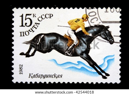 USSR - CIRCA 1982: A stamp printed in the USSR shows Kabardinskaya   horse, circa 1982 - stock photo