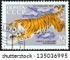 "USSR - CIRCA 1970: A stamp printed in USSR from the ""Fauna of Sikhote-Alin Nature Reserve"" issue shows a Siberian tiger, circa 1970. - stock photo"