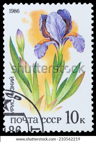 "USSR - CIRCA 1986: A stamp printed in USSR from the ""Plants of Russian Steppes "" -  Iris, circa 1986 - stock photo"