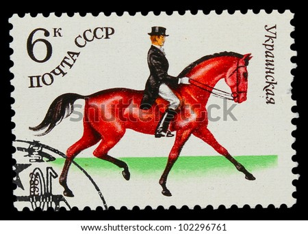 USSR - CIRCA 1982: A stamp printed in USSR, horseback riding, Ukrainian horse, Rider in a frock coat and top hat riding on a horse, circa 1982 - stock photo