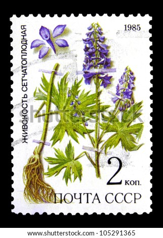 """USSR - CIRCA 1985: A stamp printed in USSR (Russia) shows image of Medicinal plant with the inscription """"Dictyocaryum"""", from the series """"Medicinal plants from Siberia"""", circa 1985 - stock photo"""