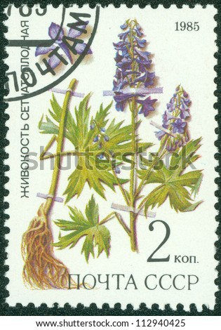 """USSR - CIRCA 1985: A stamp printed in USSR (Russia) shows image of Medicinal plant with the inscription """"Dictyocaryum& quot;, from the series """"Medicinal plants from Siberia"""", circa 1985 - stock photo"""