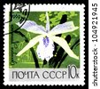 "USSR - CIRCA 1969: A stamp printed in USSR (Russia) shows white orchid with the inscription ""Cattleya"", from the series ""Academy of Sciences Botanical Gardens, Moscow"", circa 1969 - stock photo"