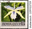"USSR - CIRCA 1969: A stamp printed in USSR (Russia) shows white orchid with the inscription ""Cattleya"" ;, from the series ""Academy of Sciences Botanical Gardens, Moscow"", circa 1969 - stock photo"