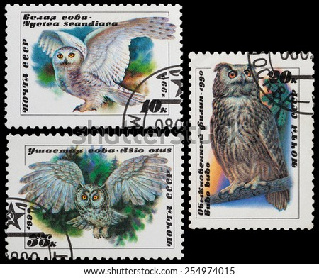 USSR - CIRCA 1990: A stamp printed in USSR showing owl, circa 1990. - stock photo