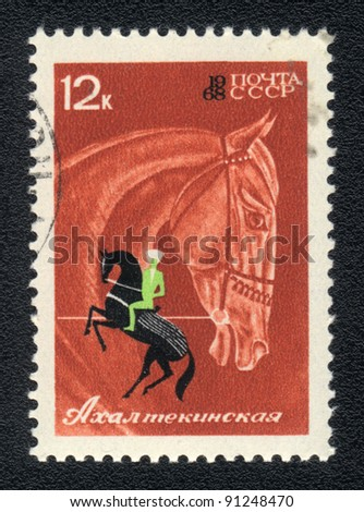 USSR - CIRCA 1968: A stamp printed in USSR shows  a  Akhal -Teke horse, series horse breed in a equestrian sport, circa 1968