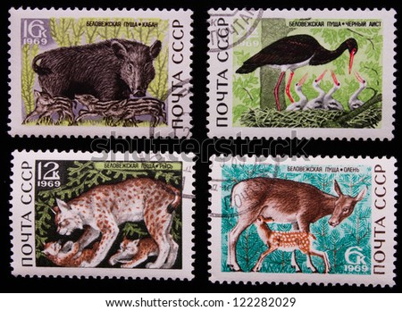 USSR- CIRCA 1969: A stamp printed in USSR shows animals of different kinds, circa 1969. - stock photo