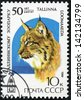 USSR - CIRCA 1989: A stamp printed in USSR shows Eurasian Lynx, Lynx lynx, series, circa 1989 - stock photo